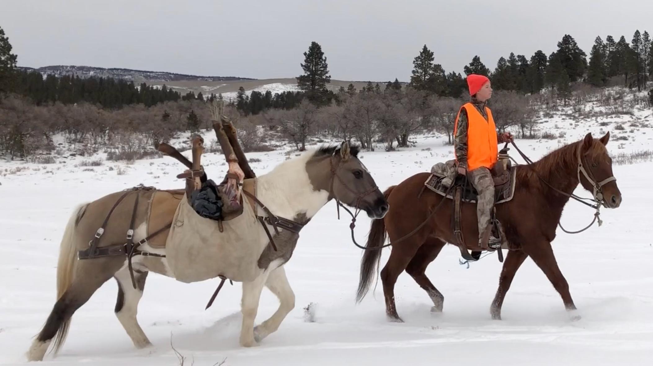 elk hunter horseback