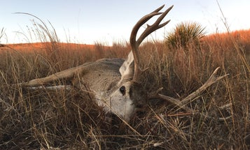 Lady Luck: Tagging Out in Nebraska's Sandhills