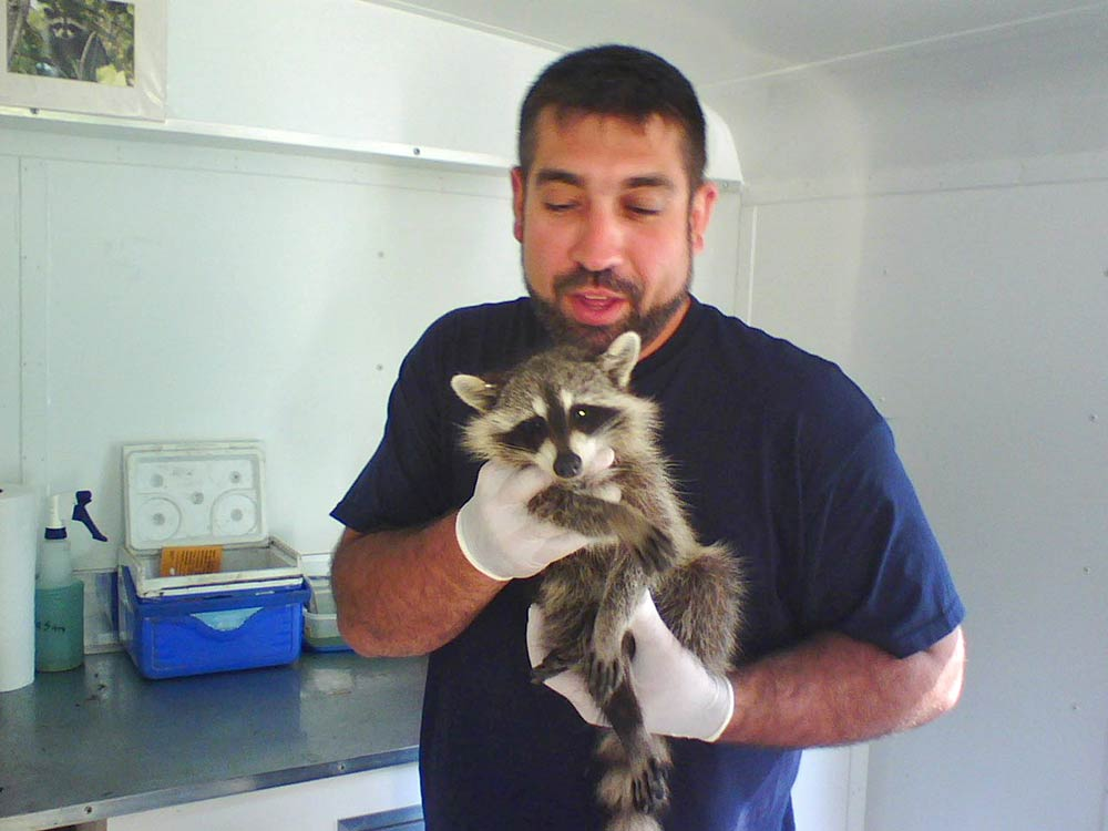 man holding up a raccoon