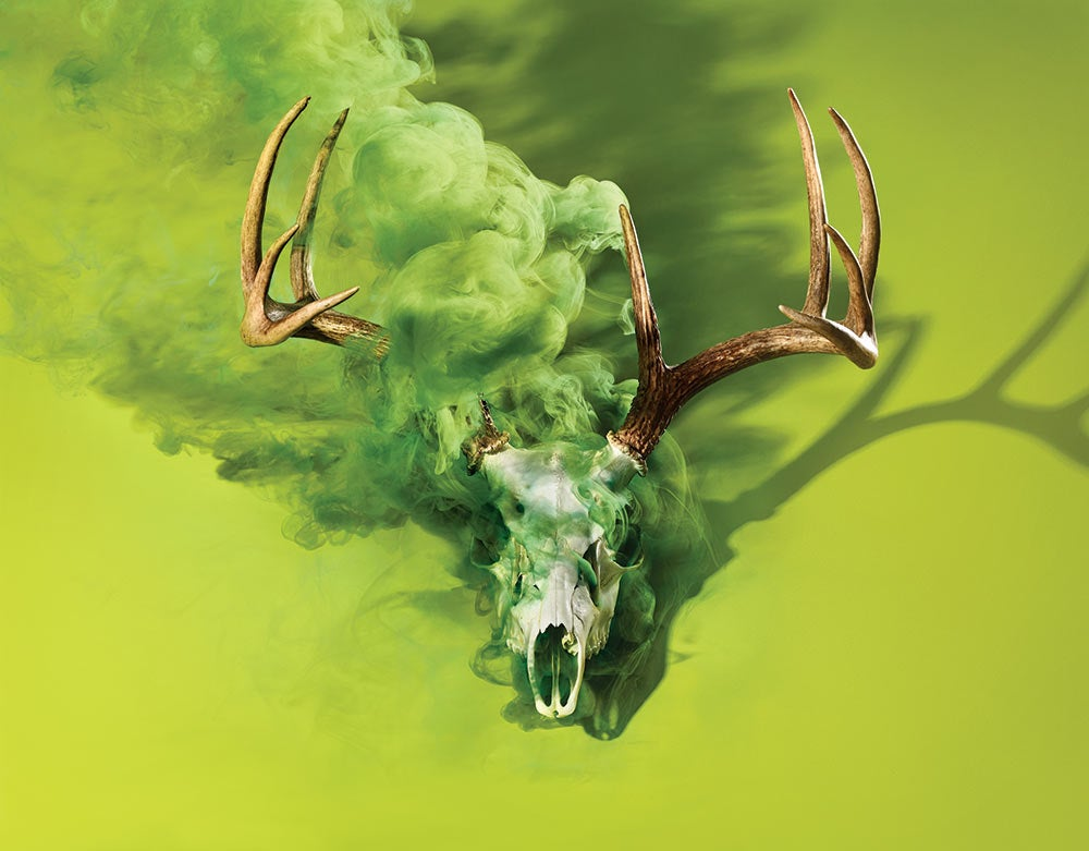 a deer skull emitting green smoke
