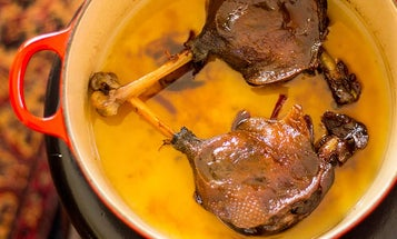 How to Cook Wild Goose