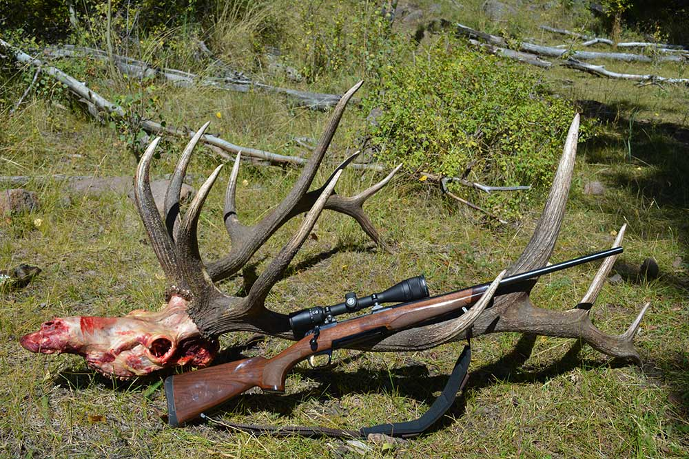rifle leaning against elk antlers