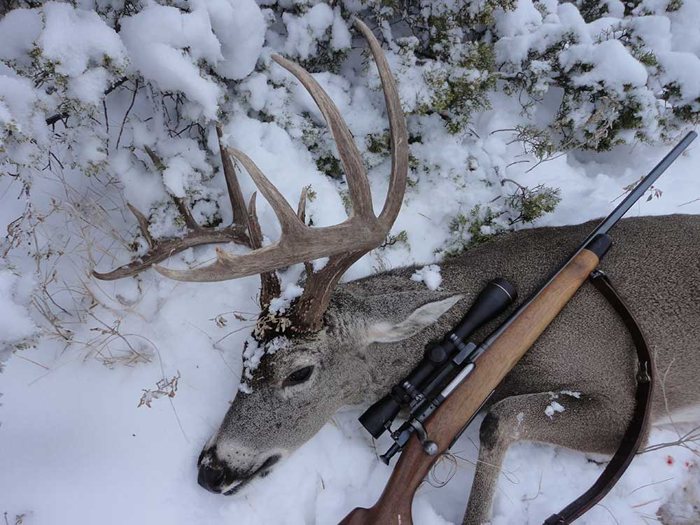 deer and hunting rifle in the snow