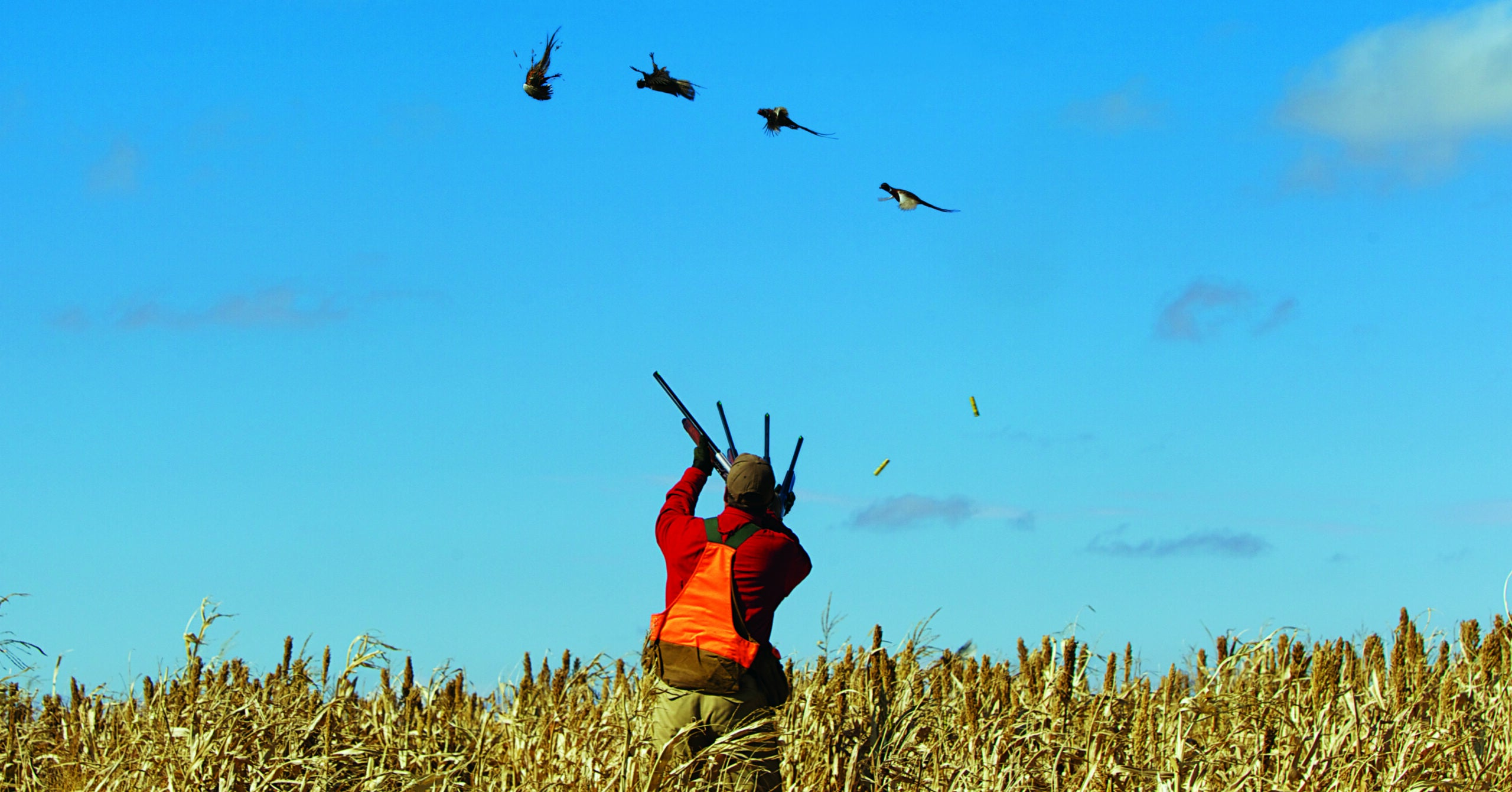 Wingshooting Skills: 6 Tips to Get Ready for Bird Season