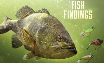 Fishing Findings: New Science Might Help You Catch More—and Bigger—Fish