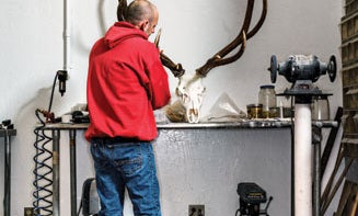 Skulls Inc.: Behind the Scenes of a World-Class Taxidermy Shop