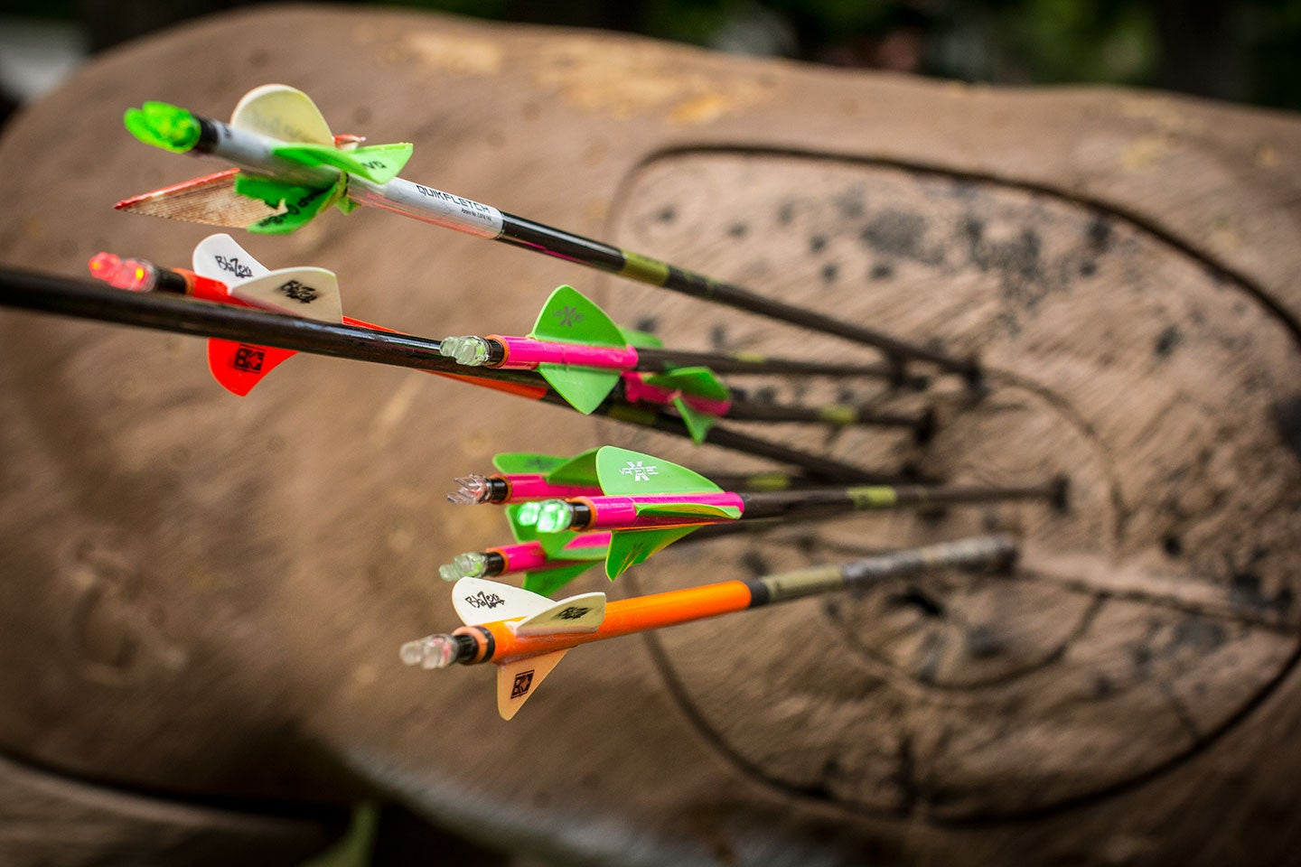 Busted: Bowhunting's 10 Biggest Myths