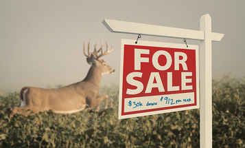 Wise Acres: How to Buy a Whitetail Deer Hunting Property