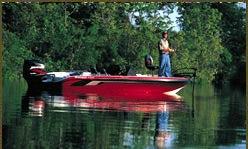Tackle-Free Fishing