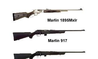 Rifles 2006