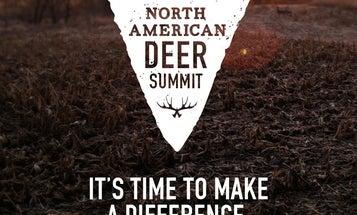 Deer Summit Resolutions: 15 Priorities for National Deer Alliance to Tackle