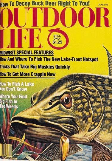 httpswww.outdoorlife.comsitesoutdoorlife.comfilesimport2014importImage2007legacyoutdoorcovergallery1981_06.jpg