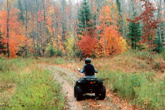 ATV Maintenance: Tips for Quieting Your Hunting Quad