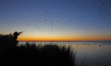 Cast and Blast: Duck Hunting and Fishing for Redfish in Texas