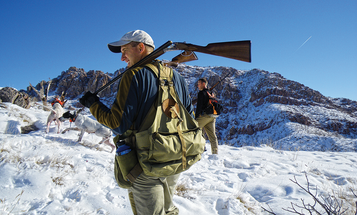 Devil Birds: How to Hunt Chukar