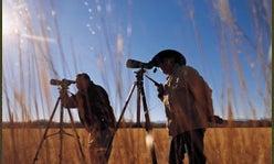 Hunting Optics 2003 – Glossary