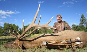 Shut Up and Run: Your New Strategy for Hunting Trophy Bull Elk this Season