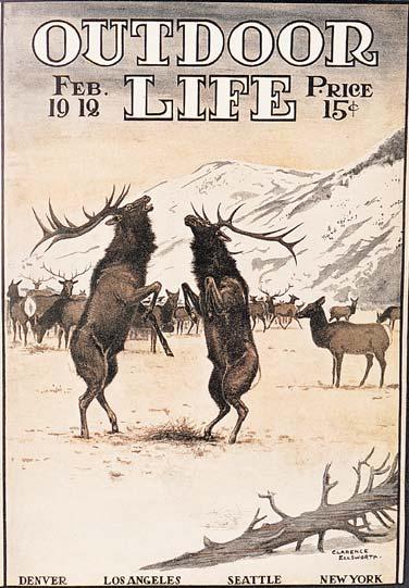 """""""Elk,"""