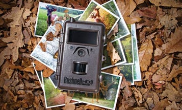 Essential Outdoor Skill: Dial in Your Deer