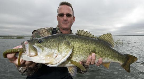 httpswww.outdoorlife.comsitesoutdoorlife.comfilesimport2014importArticleembedfishfundamental.jpg