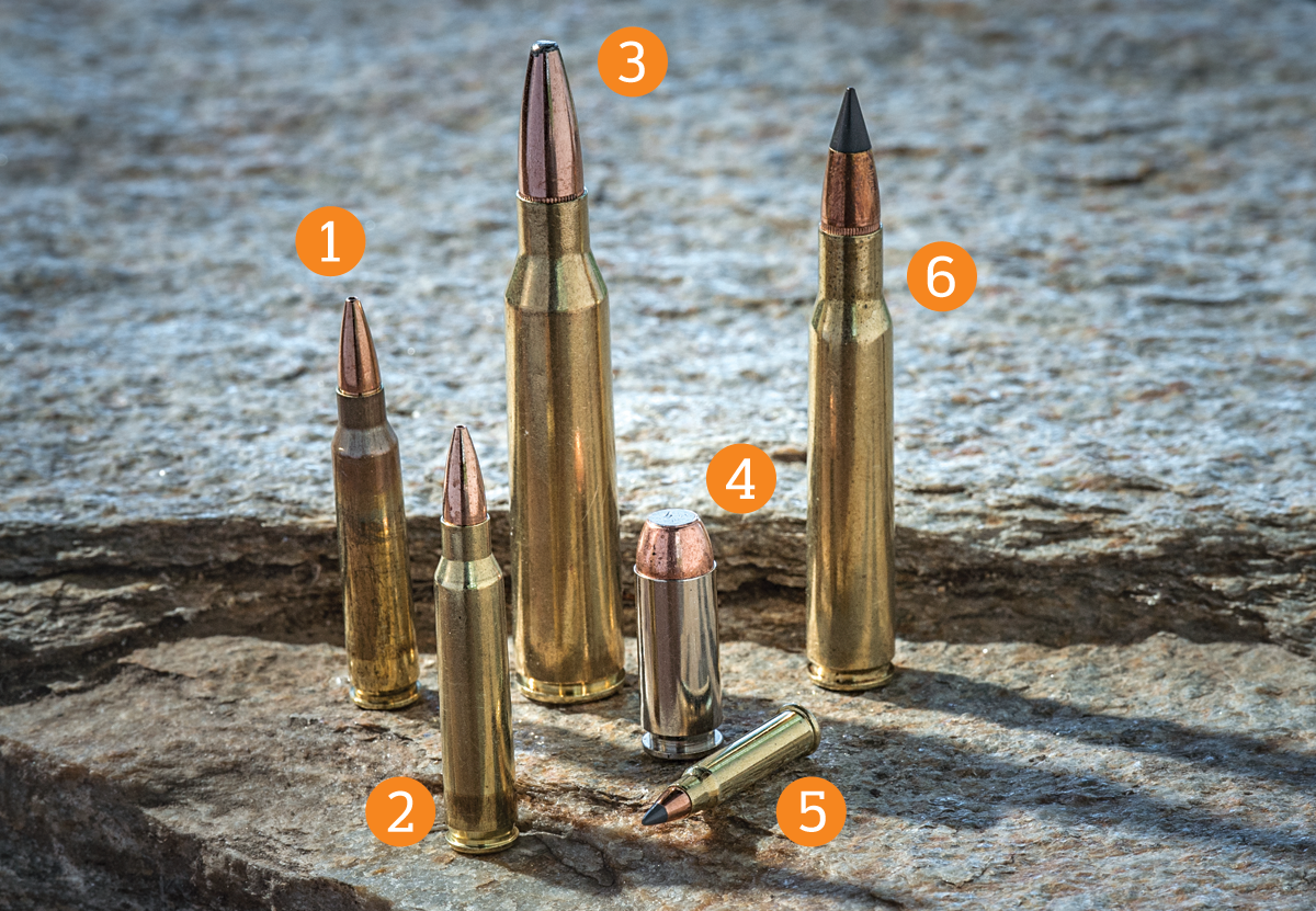 The 6 Best New Hunting Loads for 2015