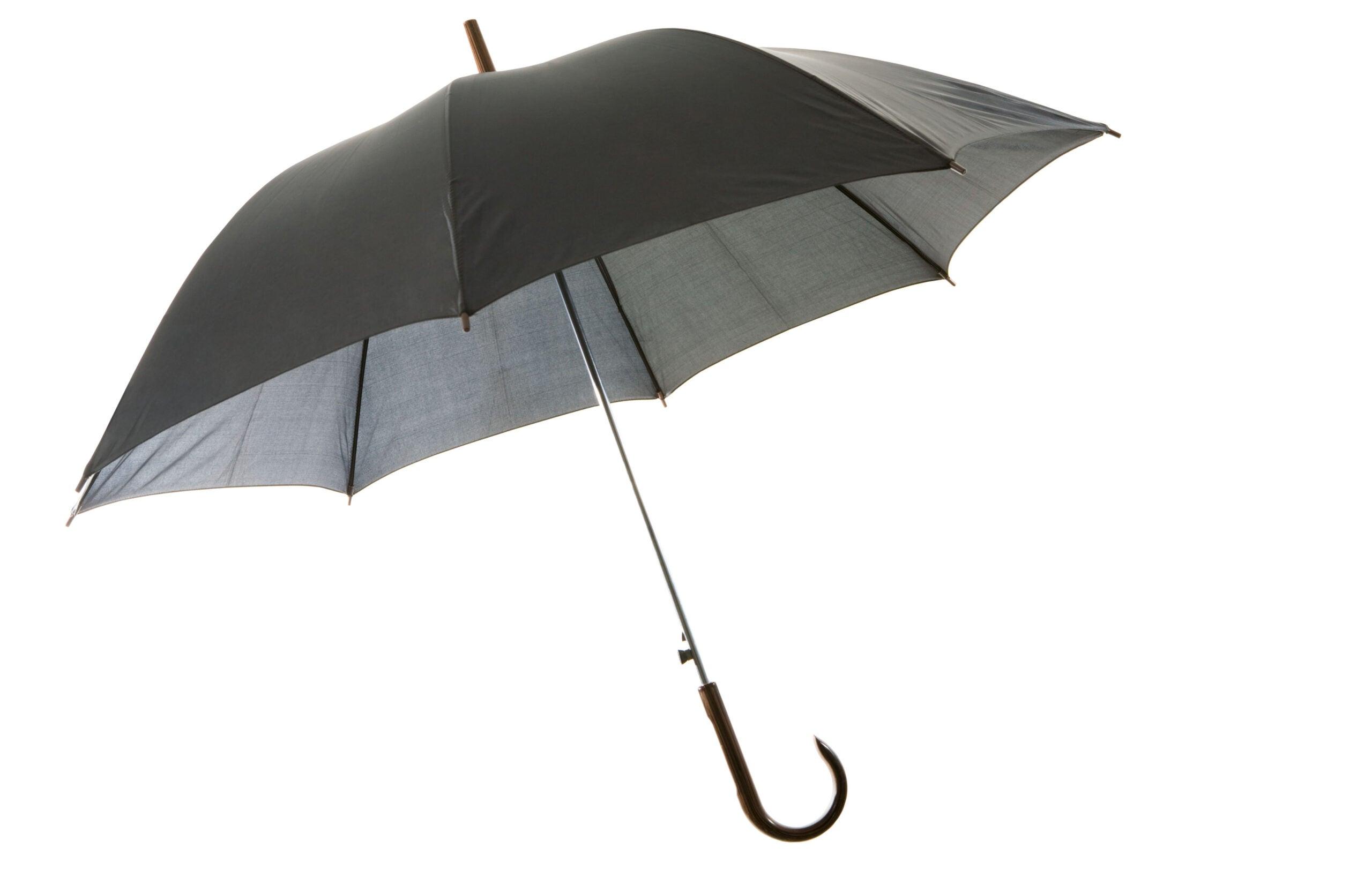 How to Make an Umbrella Duck Blind