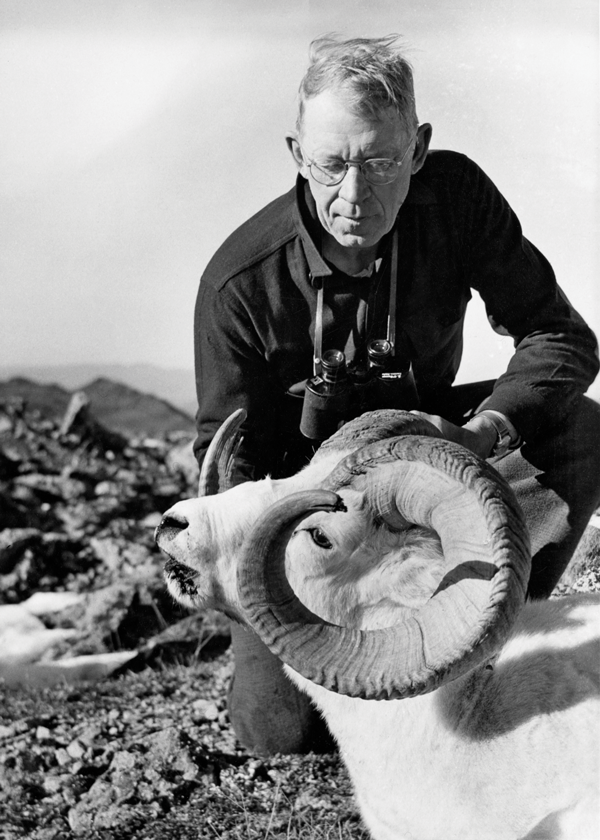 jack o'connor, sheep hunting, ram hunting, hunting quotes, OL archives, outdoor life archives, jack o'connor outdoor life