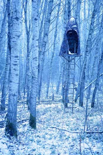 httpswww.outdoorlife.comsitesoutdoorlife.comfilesimport2014importImage2007legacyoutdoorimagescanada08_525.jpg