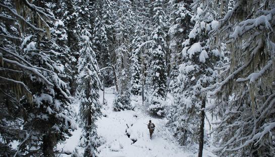 hunter in snow