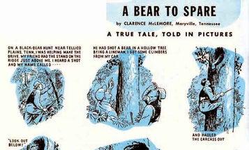 A Bear to Spare