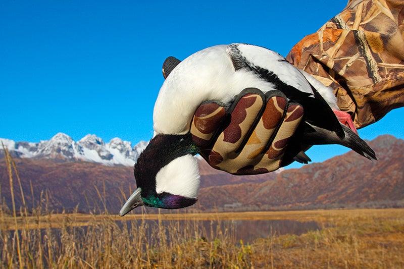 Cast and Blast: Sea Duck Hunting and Halibut Fishing on Kodiak Island, Alaska