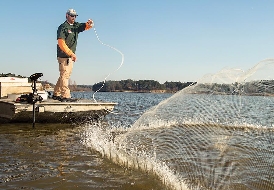 McNew skillfully slings his cast net on Georgia's Lake Allatoona