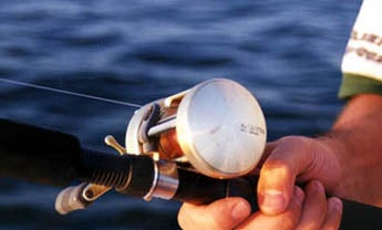 Buying a New Reel