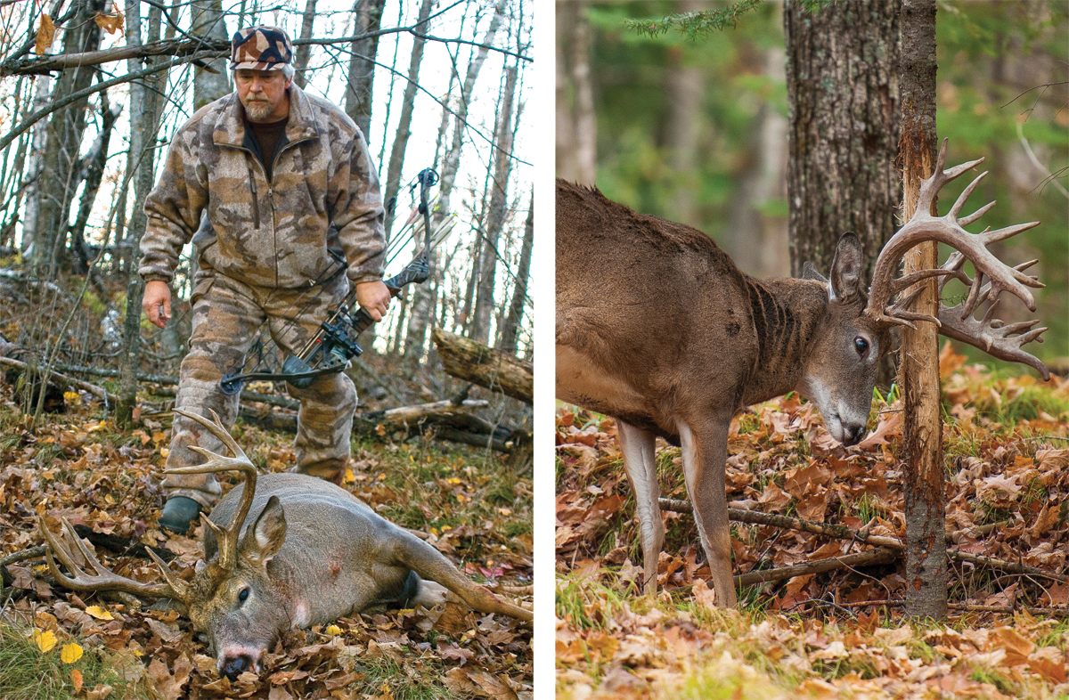7 Tips for Bowhunting Big Bucks in Big Woods