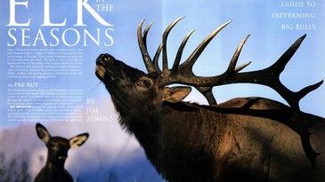 elk by the seasons