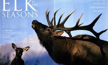 A Four-Season Guide to Patterning Big Bull Elk