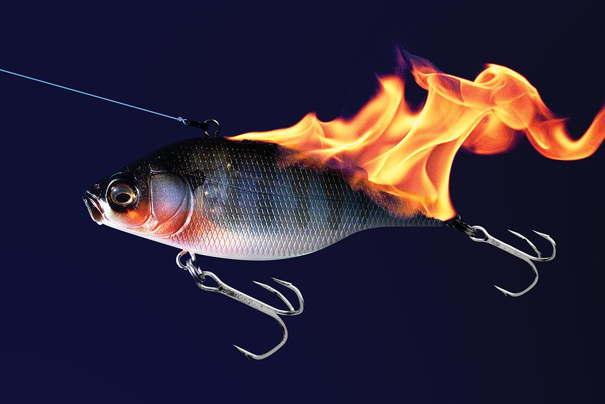 Burn, Baby, Burn: Reel Fast for Fall Bass