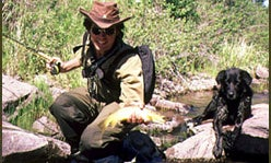Spring-Creek Trout