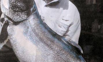 Massachusetts Angler Catches State-Record Lake Trout