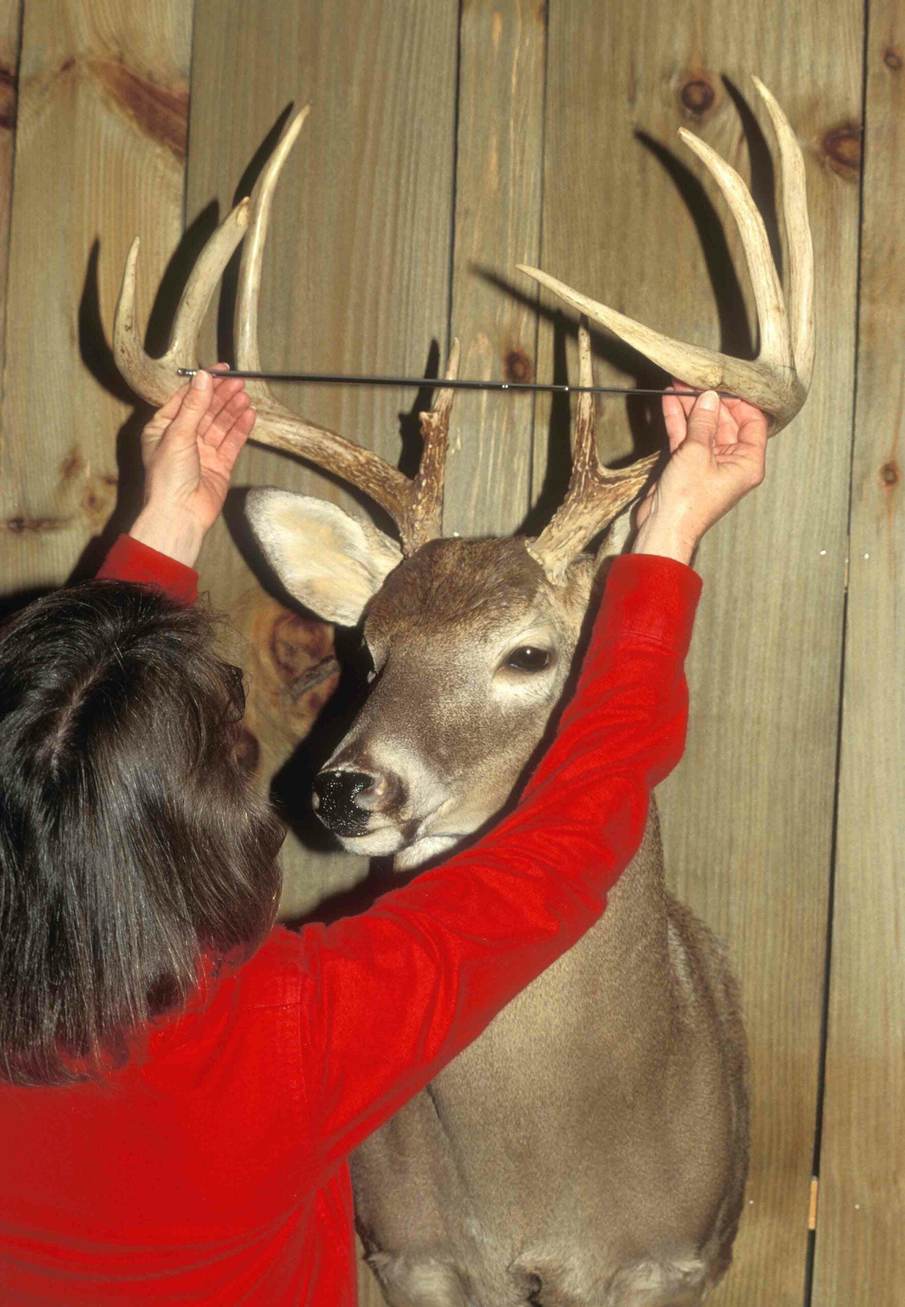 Score Your Buck