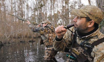Duck Hunting: Calling Tips from Expert Waterfowlers