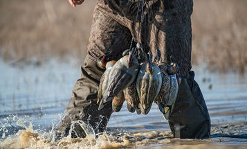 5 Problems with Your Duck Decoy Spread, and How to Fix Them