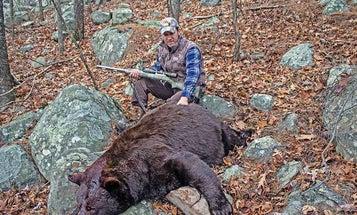 6 Reasons Why You Should Hunt Black Bears