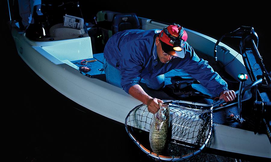 catching bass at night