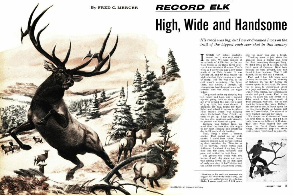 fred mercer record  bull story