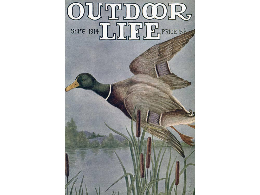 September 1914 cover of Outdoor Life