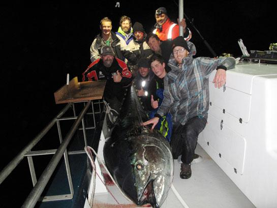 Potential World Record Bluefin Caught in New Zealand