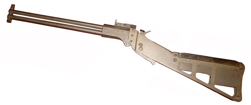 survival guns
