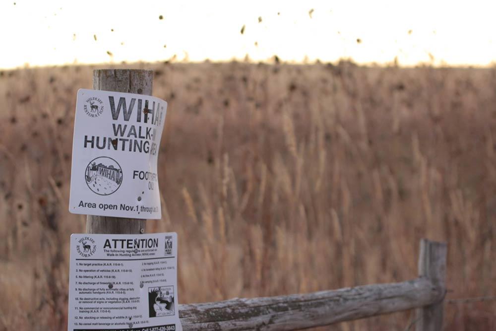 walk-in hunting area