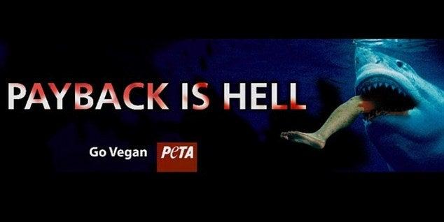 PETA: Shark Attack Victims Deserve It